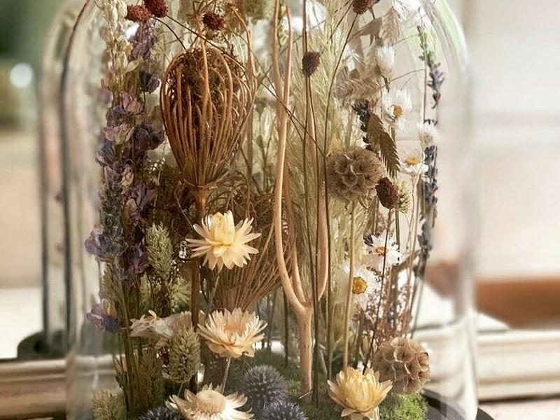 Plantes naturelles et fleurs intemporelles